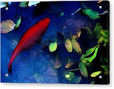 Goldfish Acrylic Print by Ron Jones
