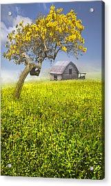 Good Morning Spring Acrylic Print by Debra and Dave Vanderlaan