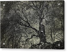 Grabbing Acrylic Print by Laurie Search