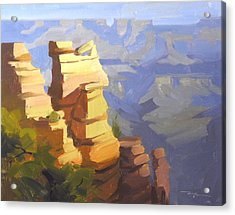 Grand Canyon Acrylic Print by Richard Robinson