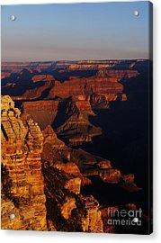 Grand Canyon Sunset Acrylic Print by Holger Ostwald