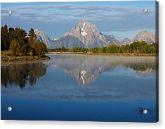Grand Teton Morning Acrylic Print by Johan Elzenga
