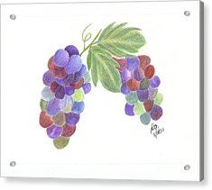 Grapes Acrylic Print by DebiJeen Pencils