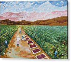 Grapes Farmers Acrylic Print by Johnny Otilano