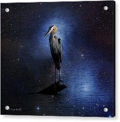 Great Blue Heron On A Starry Night Acrylic Print by J Larry Walker