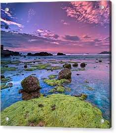 Green Moss Covered Rocks At Sunrise Acrylic Print by AndreLuu