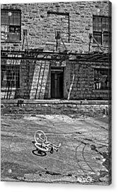Growing Up...an Economics Tale Bw Acrylic Print by Steve Harrington