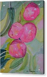 Gulf Ruby Plums Acrylic Print by Warren Thompson
