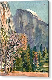 Half Dome Acrylic Print by Donald Maier