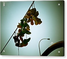 Hanging Out On A Wire Acrylic Print by Michael Knight