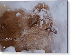 Happy Holidays Christmas Card Acrylic Print by Joanne Smoley