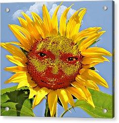 Happy Sunflower Acrylic Print by Susan Leggett