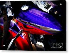 Harley Addiction Acrylic Print by Susanne Van Hulst