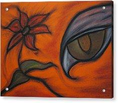 Hawk Eye Enchantment Acrylic Print by Tracy Fallstrom