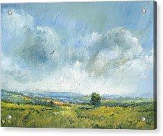Hawk Over The Yar Valley Acrylic Print by Alan Daysh