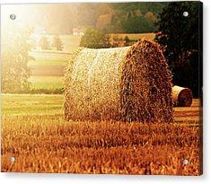 Hay Bale Acrylic Print by Photographe