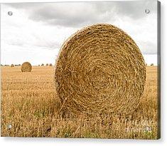 Hay Bales Acrylic Print by Edward Fielding