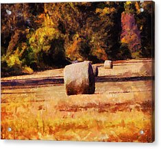Hay Bales Acrylic Print by Jai Johnson