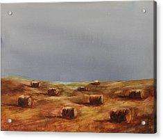 Hayfield Acrylic Print by Ruth Kamenev