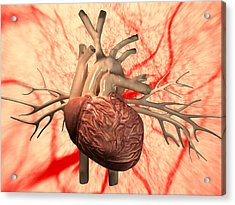 Heart, Computer Artwork Acrylic Print by Equinox Graphics