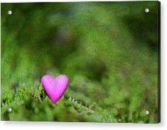 Heart In Moss Acrylic Print by Alexandre Fundone