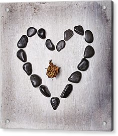 Heart With Rose Acrylic Print by Joana Kruse