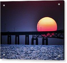 Hello Sun Acrylic Print by Vicki Jauron