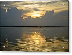 Herons At Low Tide Acrylic Print by Ken  Collette