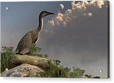 Hesperornis By The Sea Acrylic Print by Daniel Eskridge