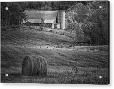 Hidden Away In Black And White Acrylic Print by Mary Timman