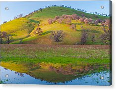 Hill Reflection In Pond Acrylic Print by Marc Crumpler
