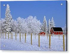 Hoarfrost On Trees Around Red Barns Acrylic Print by Mike Grandmailson