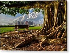 Hobbit Eyeview Acrylic Print by Debra and Dave Vanderlaan