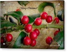 Holly Christmas Acrylic Print by Barbara K