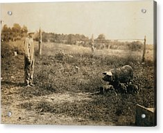 Homer Hunt Tending Pigs, Rockcastle Acrylic Print by Everett