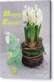Hoppy Easter Says The Bunny Acrylic Print by Ausra Huntington nee Paulauskaite
