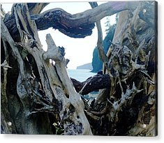 I Came From Out There Acrylic Print by George Cousins