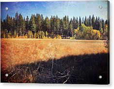 I Roam Acrylic Print by Laurie Search