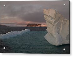Ice Formations Float In Blue Water Acrylic Print by Norbert Rosing