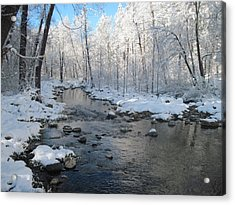 Icing On The Trees Acrylic Print by Sandy Tracey