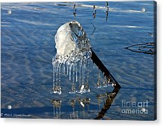 Icy Fence Post Acrylic Print by Mitch Shindelbower