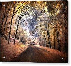 Icy Road Acrylic Print by Jai Johnson