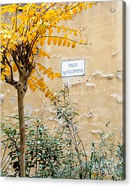 Il Piazza Malcontenti Acrylic Print by Michael Flood