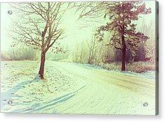 Illuminated By Sun On Snowy Forest Path Acrylic Print by Rambynas