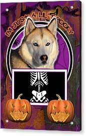 I'm Just A Lil' Spooky Siberian Husky Acrylic Print by Renae Laughner