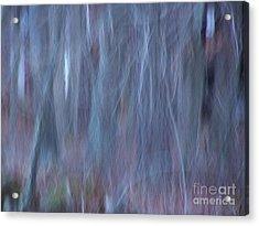 Imagination Acrylic Print by Greg Geraci