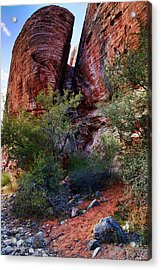 In The Canyon Acrylic Print by Rick Berk