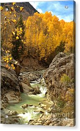 In The Rockies Acrylic Print by Phil Huettner