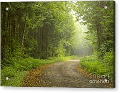 Into The Beyond Acrylic Print by Idaho Scenic Images Linda Lantzy