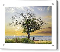 Introspective Acrylic Print by Brian Wallace
